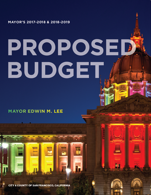 Budget Book Cover