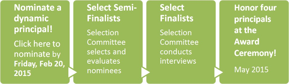 MPYA Selection Process Graphic 2014-2015