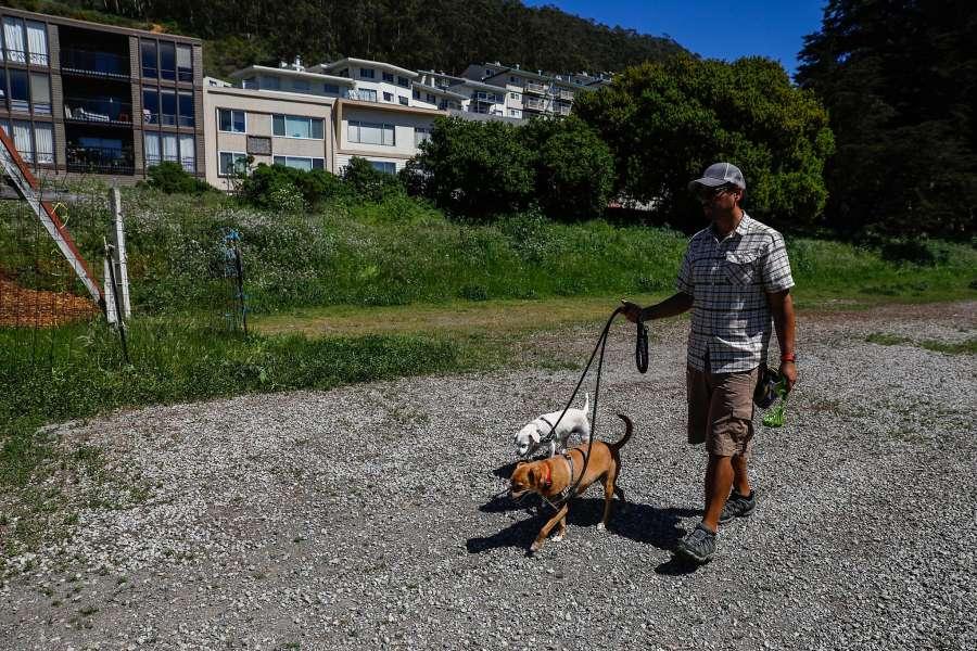 Dog walker passing a public lot